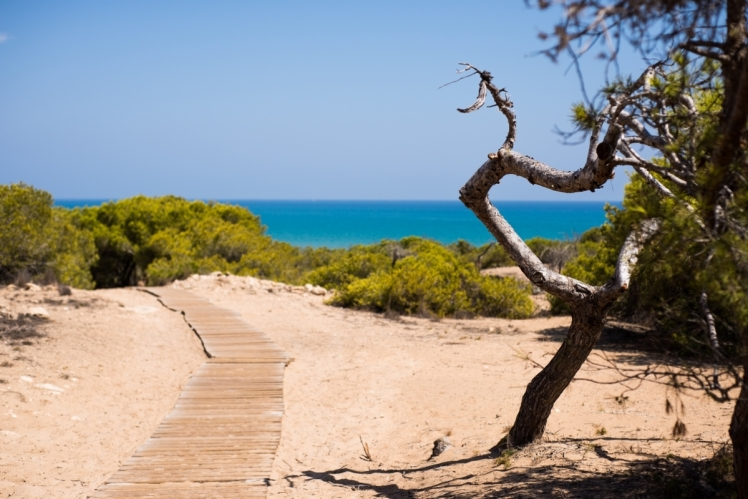 Costa Blanca - Landscape Photo 7