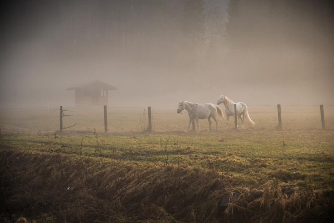 Eibsee-Landscape-photo- (12)