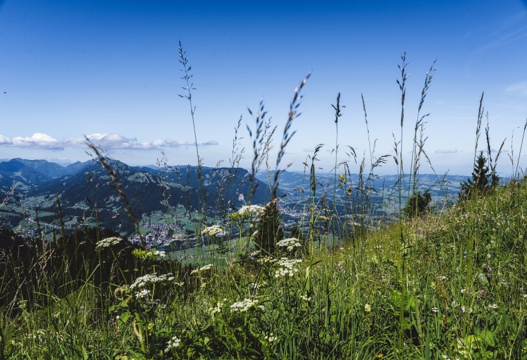 gruenten-alps-landscape-photo (4)