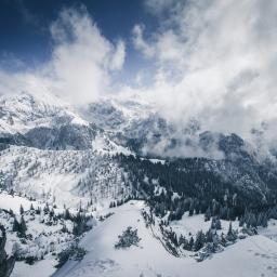 Jenner at winter