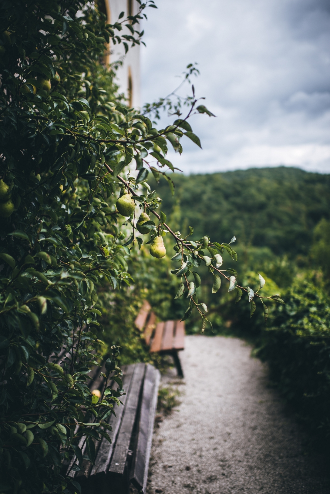 egloffstein-germany-landscape-photo- (2)